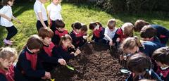 Green Fingers Planting Potatoes, Peas and Carrots!