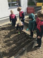 Planting Outdoors!